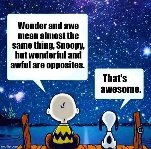 Musing. |  Wonder and awe mean almost the same thing, Snoopy, but wonderful and awful are opposites. That's         awesome. | image tagged in muse,charlie brown,snoopy,philosophy | made w/ Imgflip meme maker