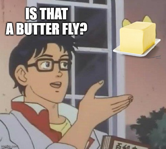 Is This A Pigeon |  IS THAT A BUTTER FLY? | image tagged in memes,is this a pigeon | made w/ Imgflip meme maker