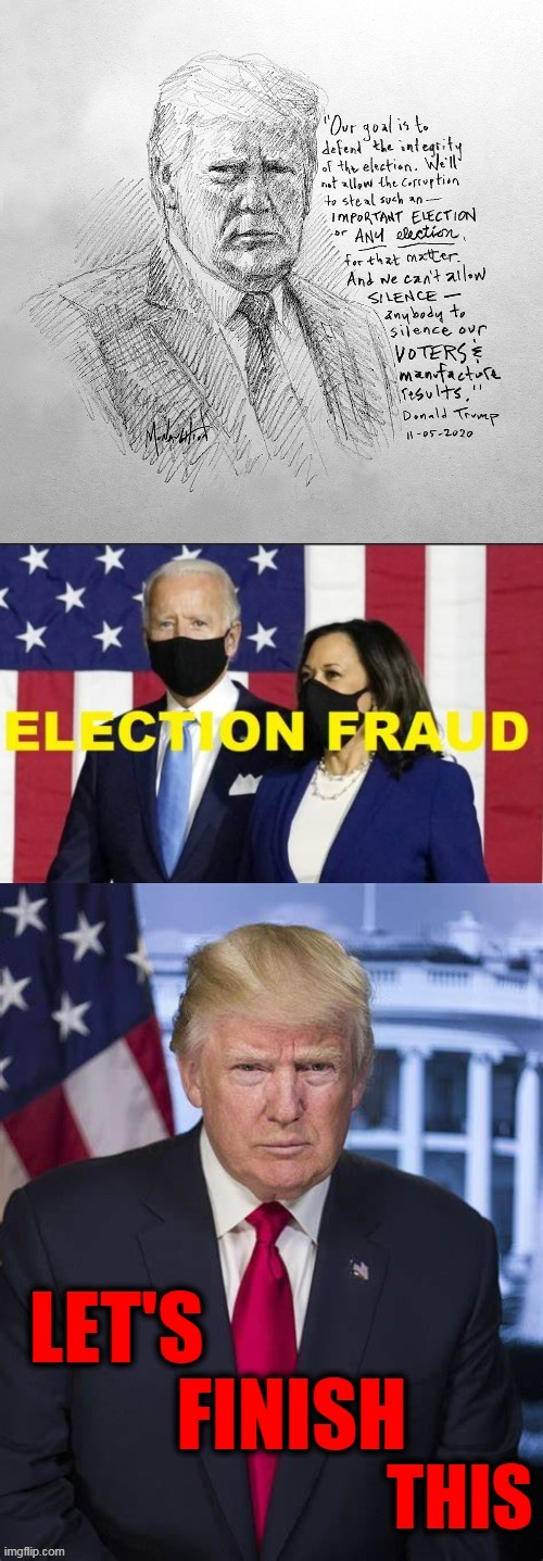 Our Goal is to Defend the Integrity of the Election | image tagged in politics,political,election 2020,election fraud,stolen,justice | made w/ Imgflip meme maker