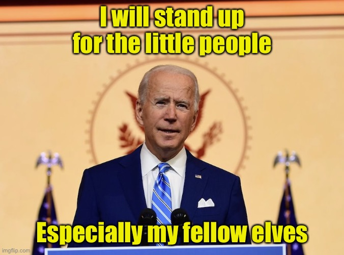 Hale our Elf Leader |  I will stand up for the little people; Especially my fellow elves | image tagged in biden the elf,elf | made w/ Imgflip meme maker