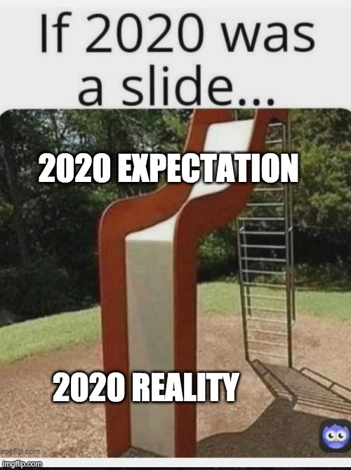 2020 EXPECTATION 2020 REALITY | made w/ Imgflip meme maker