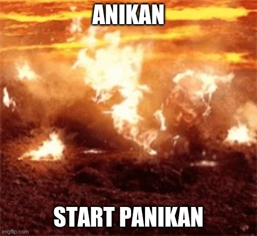 Anikan Start Panikan |  ANIKAN; START PANIKAN | image tagged in burning anikan | made w/ Imgflip meme maker