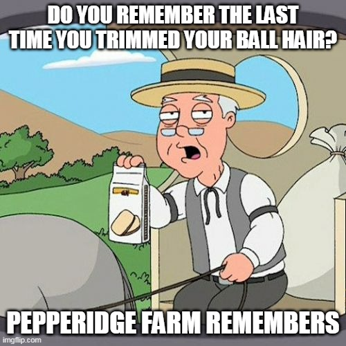 ball hair pepperidge farm family guy |  DO YOU REMEMBER THE LAST TIME YOU TRIMMED YOUR BALL HAIR? PEPPERIDGE FARM REMEMBERS | image tagged in memes,pepperidge farm remembers | made w/ Imgflip meme maker