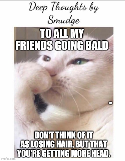 Smudge |  TO ALL MY FRIENDS GOING BALD; J M; DON'T THINK OF IT AS LOSING HAIR, BUT THAT YOU'RE GETTING MORE HEAD. | image tagged in smudge | made w/ Imgflip meme maker