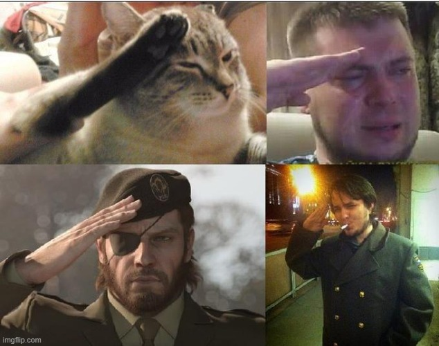 Ozon's Salute | image tagged in ozon's salute | made w/ Imgflip meme maker
