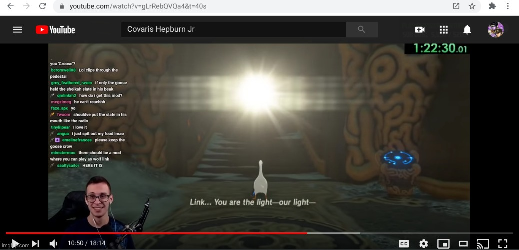 the goose is the light | image tagged in the legend of zelda breath of the wild,goose | made w/ Imgflip meme maker