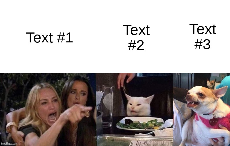 Woman Yelling At Cat (3 Panels) |  Text #3; Text #2; Text #1 | image tagged in woman yelling at cat 3 panels | made w/ Imgflip meme maker