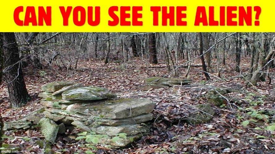 Can you find the alien? This one is hard! | image tagged in memes | made w/ Imgflip meme maker