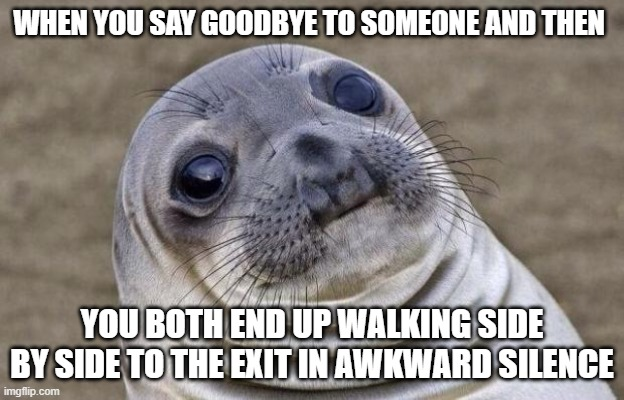 Awkward Moment Sealion |  WHEN YOU SAY GOODBYE TO SOMEONE AND THEN; YOU BOTH END UP WALKING SIDE BY SIDE TO THE EXIT IN AWKWARD SILENCE | image tagged in memes,awkward moment sealion | made w/ Imgflip meme maker