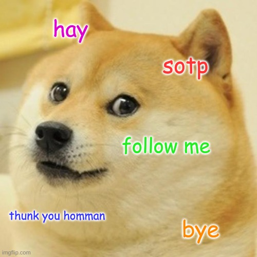 Follows Please! |  hay; sotp; follow me; thunk you homman; bye | image tagged in memes,doge,funny,pandaboyplaysyt | made w/ Imgflip meme maker