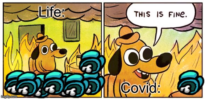 2020 |  Life:; Covid: | image tagged in memes,this is fine | made w/ Imgflip meme maker