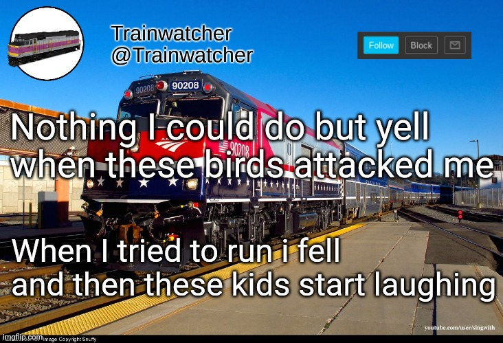 Trainwatcher Announcement 4 |  Nothing I could do but yell when these birds attacked me; When I tried to run i fell and then these kids start laughing | image tagged in trainwatcher announcement 4 | made w/ Imgflip meme maker