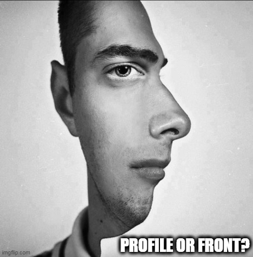 YOU Decide.... |  PROFILE OR FRONT? | image tagged in fun,strange,awkward,hmmm,the most interesting man in the world,haha | made w/ Imgflip meme maker
