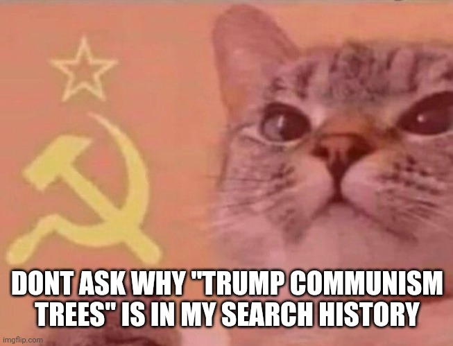 "Communist cat |  DONT ASK WHY ""TRUMP COMMUNISM TREES"" IS IN MY SEARCH HISTORY 