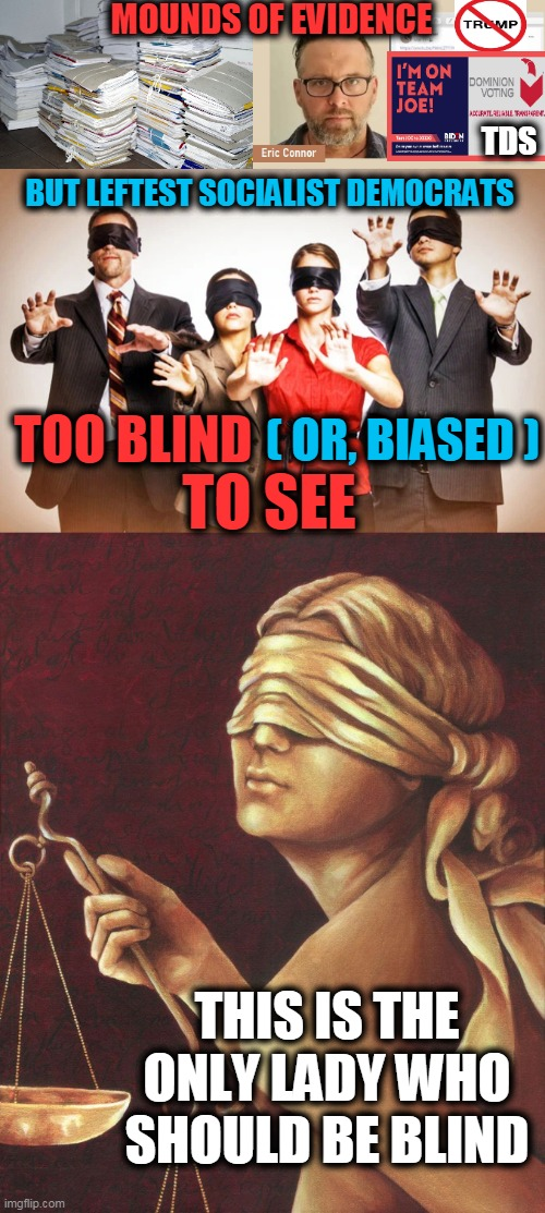 Blind Justice Not Blind Partisanship |  MOUNDS OF EVIDENCE; TDS; BUT LEFTEST SOCIALIST DEMOCRATS; ( OR, BIASED ); TOO BLIND; TO SEE; THIS IS THE ONLY LADY WHO SHOULD BE BLIND | image tagged in political meme,stop the steal,evidence,democratic socialism,justice,election fraud | made w/ Imgflip meme maker