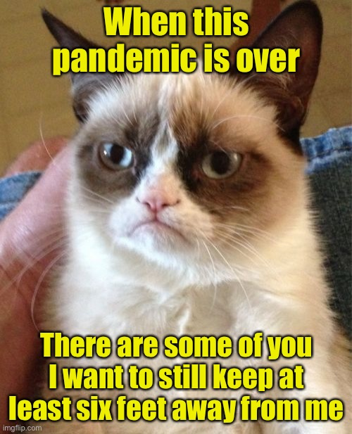 Grumpy Cat |  When this pandemic is over; There are some of you I want to still keep at least six feet away from me | image tagged in memes,grumpy cat,covid-19,pandemic | made w/ Imgflip meme maker
