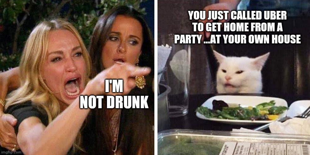 Smudge'n Drunk Karen |  YOU JUST CALLED UBER TO GET HOME FROM A PARTY ...AT YOUR OWN HOUSE; I'M NOT DRUNK | image tagged in smudge the cat,woman yelling at smudge the cat,karen carpenter and smudge cat,karen,karens,omg karen | made w/ Imgflip meme maker