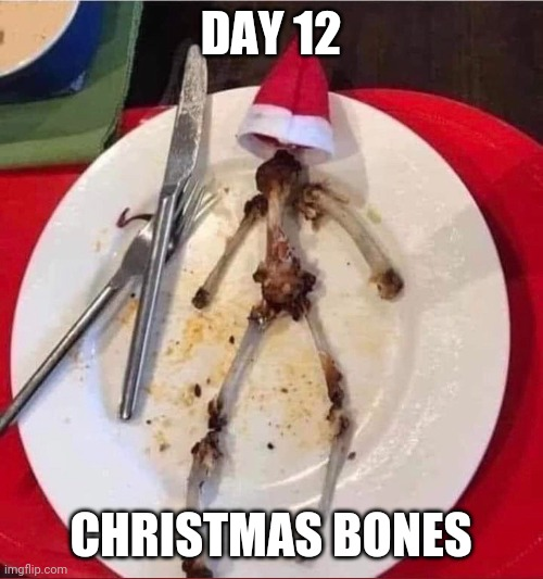 Day 12: Christmas Thanksgiving Bones |  DAY 12; CHRISTMAS BONES | image tagged in funny,memes,christmas,bones,thanksgiving,holidays | made w/ Imgflip meme maker