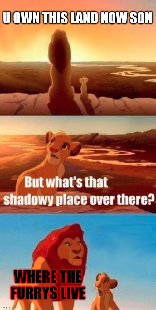 Simba Shadowy Place Meme |  U OWN THIS LAND NOW SON; WHERE THE FURRYS LIVE | image tagged in memes,simba shadowy place | made w/ Imgflip meme maker