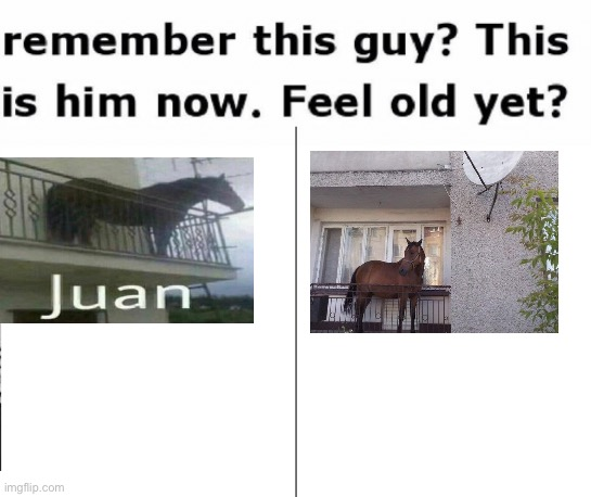 Juan | image tagged in remember this guy | made w/ Imgflip meme maker