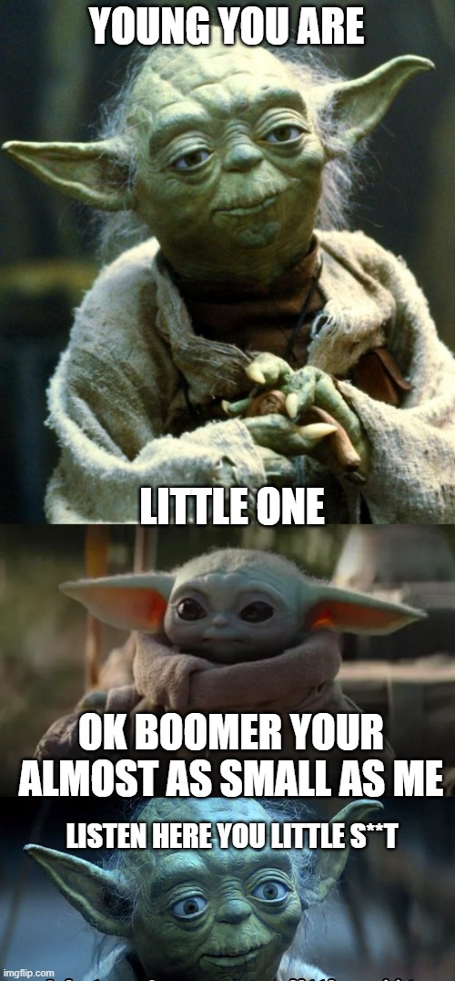 Baby Yoda And Yoda argument |  YOUNG YOU ARE; LITTLE ONE; OK BOOMER YOUR ALMOST AS SMALL AS ME; LISTEN HERE YOU LITTLE S**T | image tagged in memes,star wars yoda | made w/ Imgflip meme maker