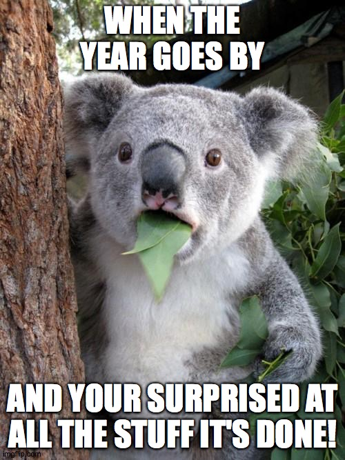 We are about to say goodbye (and good riddance) to the monstrous year of 2020! |  WHEN THE YEAR GOES BY; AND YOUR SURPRISED AT ALL THE STUFF IT'S DONE! | image tagged in memes,surprised koala,new years,2020 | made w/ Imgflip meme maker