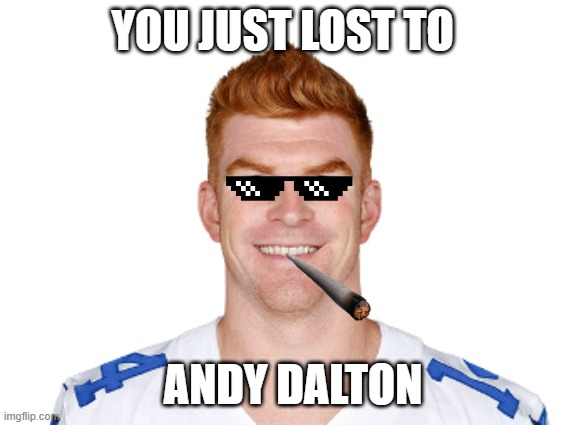 YOU JUST LOST TO; ANDY DALTON | image tagged in nfl memes,nfl football | made w/ Imgflip meme maker