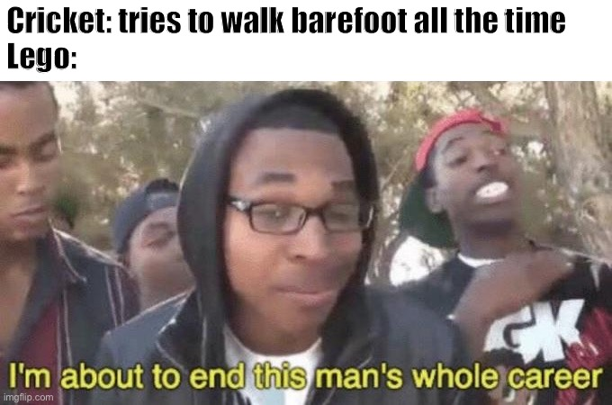 I'm about to end this man's whole career | Cricket: tries to walk barefoot all the time Lego: | image tagged in i m about to end this man s whole career | made w/ Imgflip meme maker