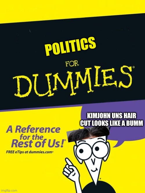 For dummies book |  POLITICS; KIMJOHN UNS HAIR CUT LOOKS LIKE A BUMM | image tagged in for dummies book | made w/ Imgflip meme maker