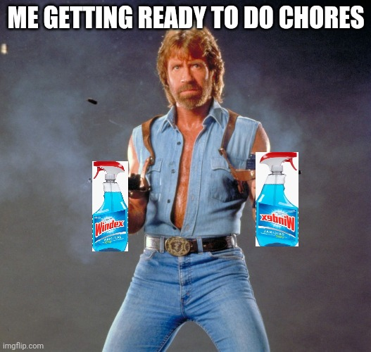 Prepare to be cleaned windows |  ME GETTING READY TO DO CHORES | image tagged in memes,chuck norris guns,chuck norris | made w/ Imgflip meme maker