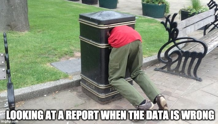 Guy in trash can |  LOOKING AT A REPORT WHEN THE DATA IS WRONG | image tagged in guy in trash can | made w/ Imgflip meme maker