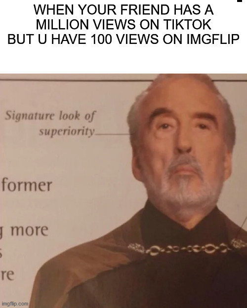 Down with TikTok! |  WHEN YOUR FRIEND HAS A MILLION VIEWS ON TIKTOK BUT U HAVE 100 VIEWS ON IMGFLIP | image tagged in signature look of superiority | made w/ Imgflip meme maker