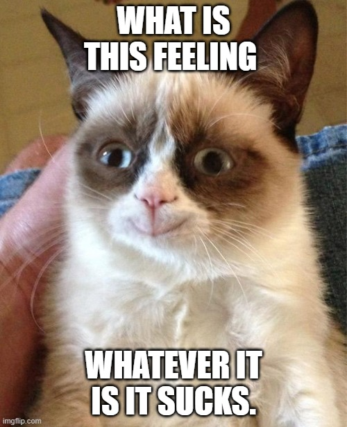 Grumpy Cat Happy |  WHAT IS THIS FEELING; WHATEVER IT IS IT SUCKS. | image tagged in memes,grumpy cat happy,grumpy cat | made w/ Imgflip meme maker