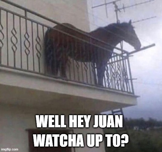 Well HEY there Juan! |  WATCHA UP T0? WELL HEY JUAN | image tagged in juan | made w/ Imgflip meme maker