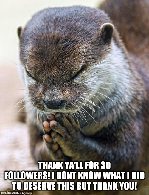 30 followers! yay! |  THANK YA'LL FOR 30 FOLLOWERS! I DONT KNOW WHAT I DID TO DESERVE THIS BUT THANK YOU! | image tagged in thank you lord otter,thank you,memes,funny,not really i am just trying to get this somewhat popular,funny not funny | made w/ Imgflip meme maker