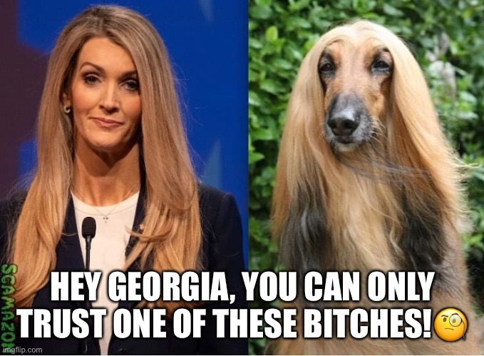 Kelly Loeffler's Familiar Dog Whistle |  HEY GEORGIA, YOU CAN ONLY TRUST ONE OF THESE BITCHES!🧐 | image tagged in kelly loeffler,bitch,crooked,scumbag republicans,right wing,trump sycophant | made w/ Imgflip meme maker