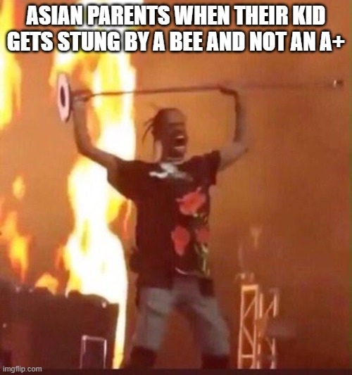 Travis Scott  |  ASIAN PARENTS WHEN THEIR KID GETS STUNG BY A BEE AND NOT AN A+ | image tagged in travis scott,high expectations asian father,memes | made w/ Imgflip meme maker