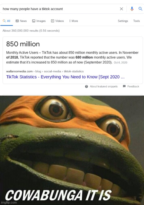 We must stand up and fight! | image tagged in cowabunga it is,tik tok | made w/ Imgflip meme maker