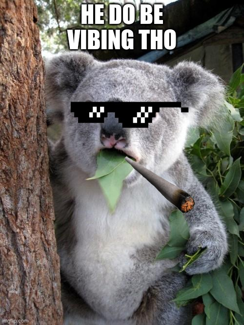 Surprised Koala |  HE DO BE VIBING THO | image tagged in memes,surprised koala | made w/ Imgflip meme maker