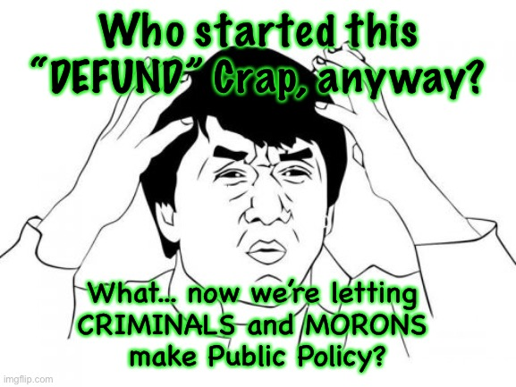 "Jackie Chan WTF |  Who started this ""DEFUND"" Crap, anyway? What... now we're letting  CRIMINALS and MORONS  make Public Policy? 
