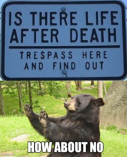 LOL | image tagged in memes,how about no bear,funny,life after death,funny signs,threats | made w/ Imgflip meme maker