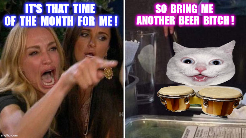 IT'S  THAT  TIME  OF  THE  MONTH  FOR  ME ! SO  BRING  ME  ANOTHER  BEER  BITCH ! | made w/ Imgflip meme maker