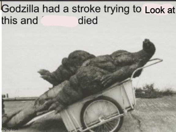 Godzilla | Look at | image tagged in godzilla | made w/ Imgflip meme maker