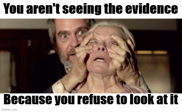 You aren't seeing the evidence Because you refuse to look at it | made w/ Imgflip meme maker