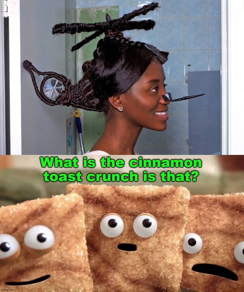What in the Heli-copter is that hairdo? |  What is the cinnamon toast crunch is that? | image tagged in crazy squares,helicopter | made w/ Imgflip meme maker