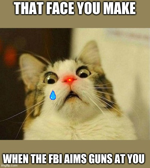 -_- <FBI DON'T MOVE |  THAT FACE YOU MAKE; WHEN THE FBI AIMS GUNS AT YOU | image tagged in memes,scared cat | made w/ Imgflip meme maker