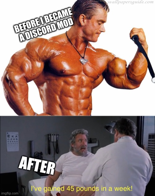 Discord mods be like |  BEFORE I BECAME A DISCORD MOD; AFTER | image tagged in body builder,funny,memes,discord mods,mods,discord | made w/ Imgflip meme maker