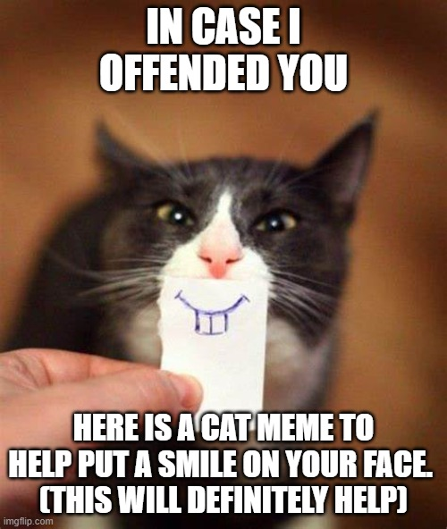 smile cat |  IN CASE I OFFENDED YOU; HERE IS A CAT MEME TO HELP PUT A SMILE ON YOUR FACE.  (THIS WILL DEFINITELY HELP) | image tagged in smile,cat meme,happy,cat,offended | made w/ Imgflip meme maker