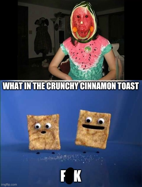|0_0| |  WHAT IN THE CRUNCHY CINNAMON TOAST; F   K | image tagged in what the cinnamon toast f is this | made w/ Imgflip meme maker