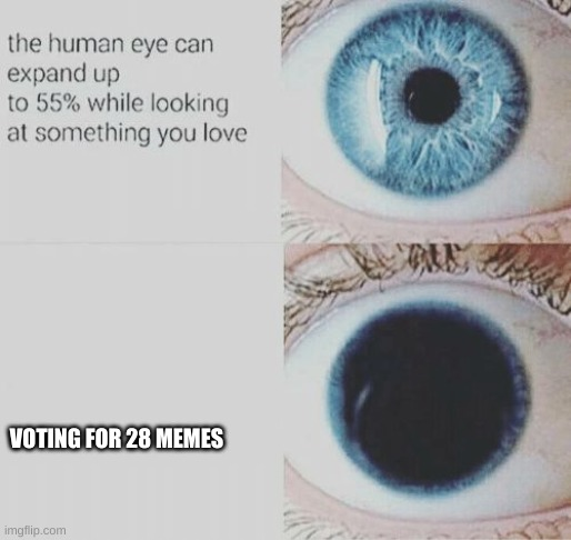 Eye pupil expand |  VOTING FOR 28 MEMES | image tagged in eye pupil expand | made w/ Imgflip meme maker